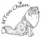 M'Ton Chien | Cours de dressage pour chiens à Bramois en Valais
